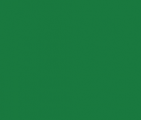plain green fabric