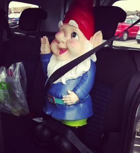 gnome seatbelt
